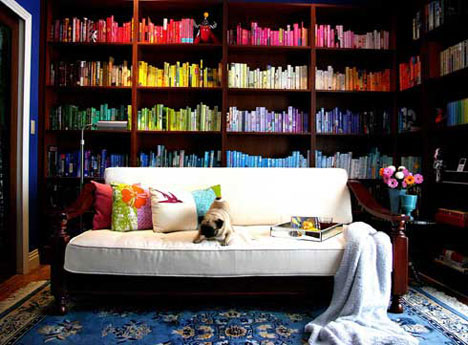 colored-bookshelves